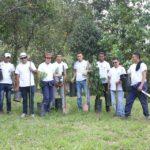 SAMSA экологический проект